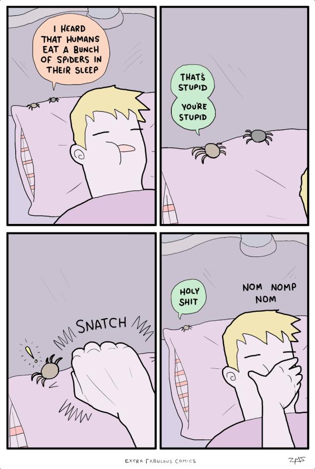 spidas
