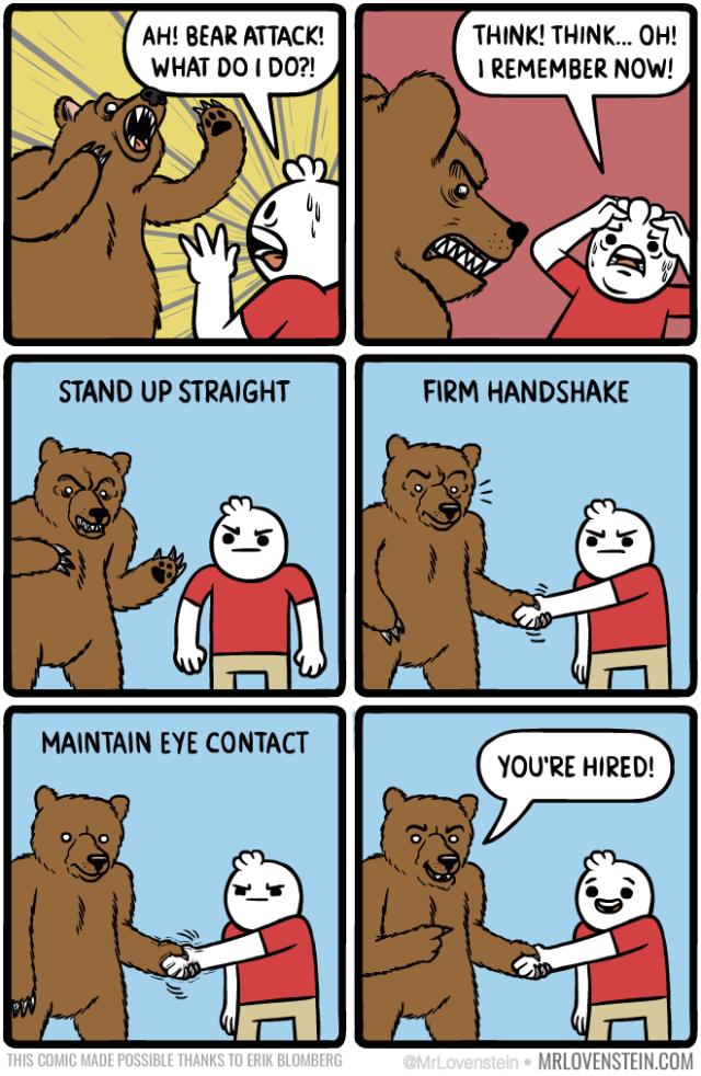 699_bear_attack